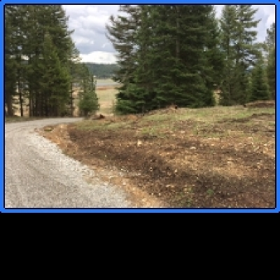 Newman Lk Residential Lots & Land Ctg-Inspection: Lot 4 W Newman Lake Dr