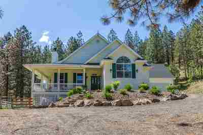 Nine Mile Falls Single Family Home New: 5814 Jergens Rd #Lot F