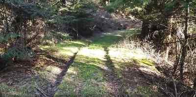 Mead Residential Lots & Land New: Mt Spokane Park