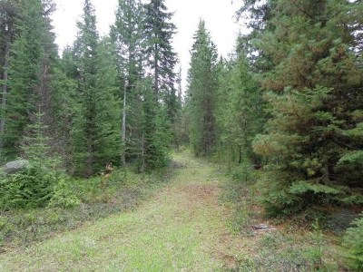 Residential Lots & Land For Sale: 2505 D Hwy 20 E