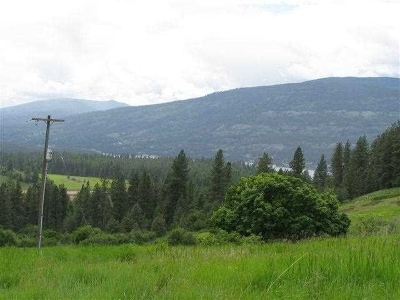 Kettle Falls Residential Lots & Land New: Bear Mountain