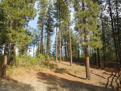 Kettle Falls Residential Lots & Land New: Fumi Circle