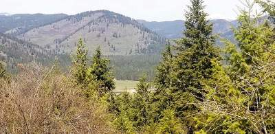 Kettle Falls Residential Lots & Land New: Moore #F