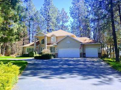 Nine Mile Falls WA Single Family Home Sold: $405,000