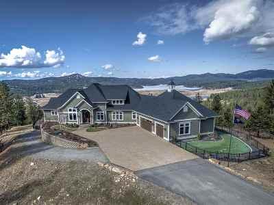 Spokane County Single Family Home For Sale: 26001 E Christine Ln