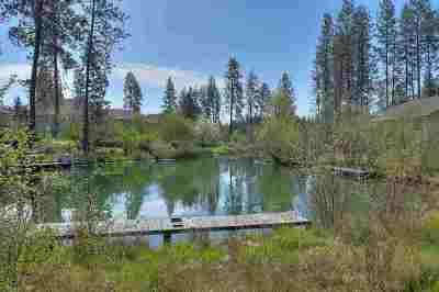 Nine Mile Falls Residential Lots & Land Ctg-Inspection: W Tormey