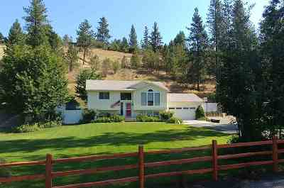 Nine Mile Falls WA Single Family Home Sold: $242,500