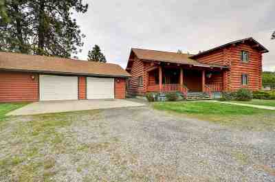 Spokane Single Family Home For Sale: 5119 S Palouse Hwy