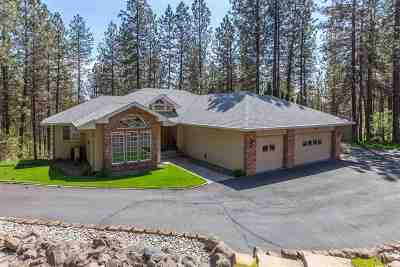 Single Family Home For Sale: 13612 N Stone Ln