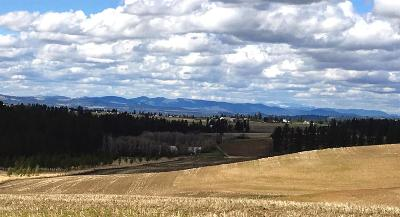 Spokane Residential Lots & Land For Sale: 07 Lunneborg Ranch Estates