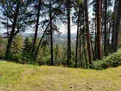 Nine Mile Falls Residential Lots & Land For Sale: 12918 W Highland Rd