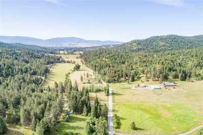 Newman Lk Residential Lots & Land For Sale: 9802 N Mitchell Rd