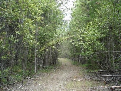 Newport Residential Lots & Land For Sale: Pines (Newport)