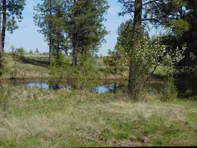 Spokane Residential Lots & Land For Sale: Indian Bluff