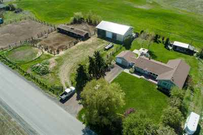 Spokane Single Family Home For Sale: 1210 S Flint Rd