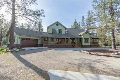 Spokane County Single Family Home New: 3213 E Elena Ln