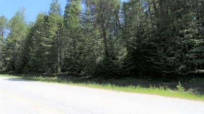 Newport Residential Lots & Land For Sale: McGowen