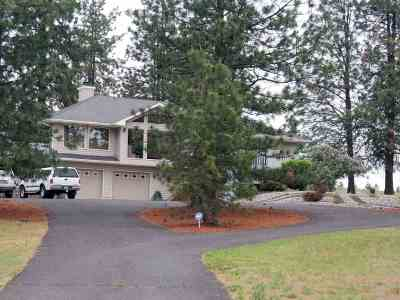 Spokane County Single Family Home New: 3516 W Monroe Rd