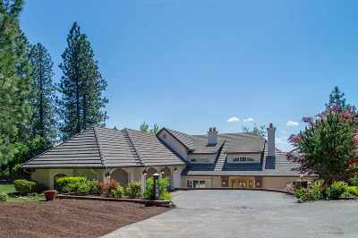 Spokane Single Family Home New: 1802 E South Ridge Dr