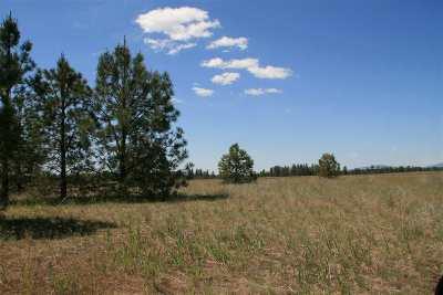 Spokane Residential Lots & Land New: N Bruce