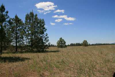 Spokane Residential Lots & Land For Sale: Lot 5 N Bruce Rd