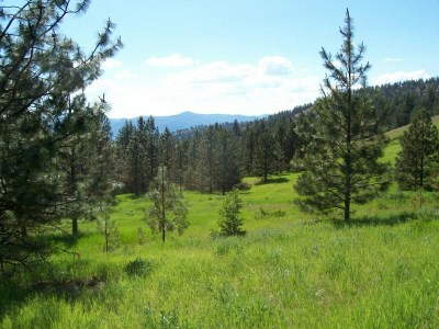 Hunters Residential Lots & Land For Sale: Selder