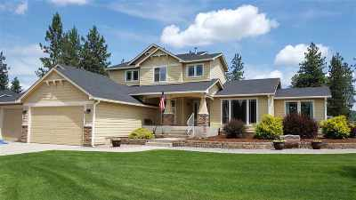 Nine Mile Falls WA Single Family Home For Sale: $395,000