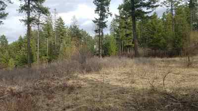Mead Residential Lots & Land For Sale: Day Mt Spokane