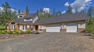 Nine Mile Falls Single Family Home Ctg-Inspection: 20667 W South Bank Rd