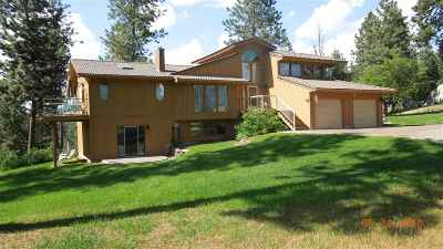 Spokane County Single Family Home For Sale: 4708 S Long Ln