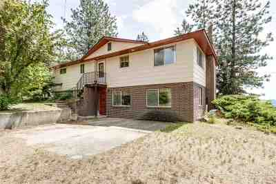 spokane Single Family Home For Sale: 6221 N Highview Ln