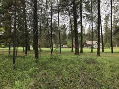 Chewelah Residential Lots & Land For Sale: 175 E Trappers Loop