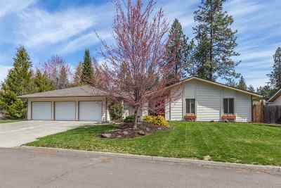 Spokane Single Family Home For Sale: 3615 S Eastgate Ct