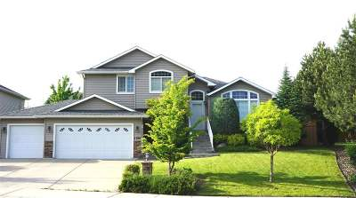 Spokane Single Family Home For Sale: 1104 W Creekstone Ave