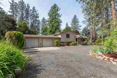 Nine Mile Falls Single Family Home For Sale: 10833 W Sagewood Rd