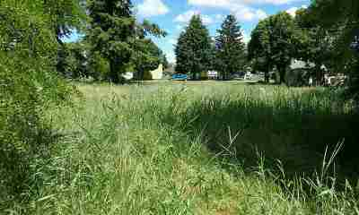 Davenport Residential Lots & Land Ctg-Inspection: 1105 12th St