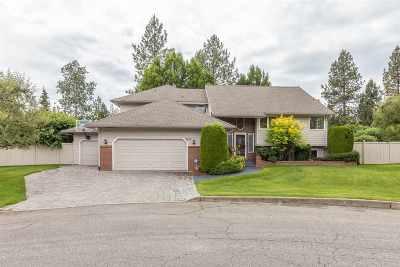 Spokane, Spokane Valley Single Family Home For Sale: 4920 S Pittsburg St