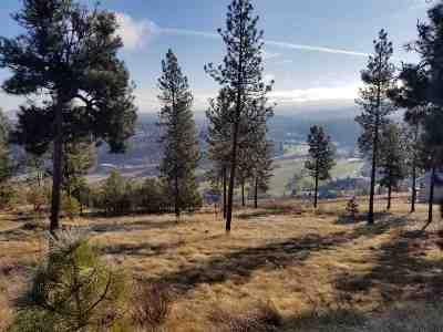 spokane Residential Lots & Land New: S Elk Run Lane