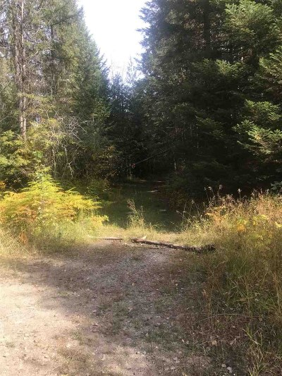 Residential Lots & Land Sold: Lime Lake Rd