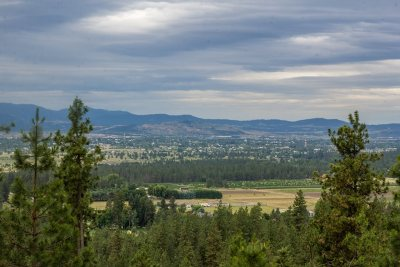 Newman Lk Residential Lots & Land For Sale: Xxx N Lookout View Ln