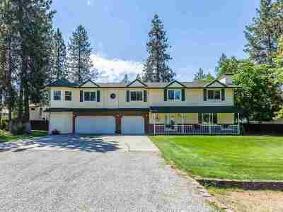 Nine Mile Falls WA Single Family Home For Sale: $445,000