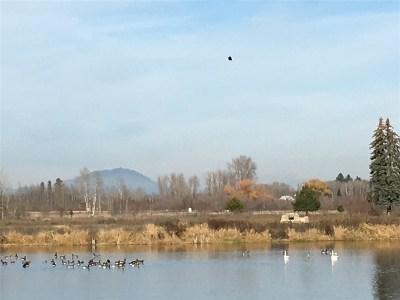 Deer Park Residential Lots & Land For Sale: 33818 N Spring Creek Rd