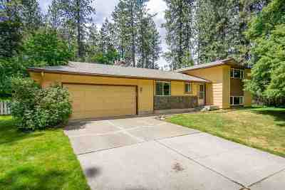Spokane Valley Single Family Home New: 4322 S Woodruff Rd