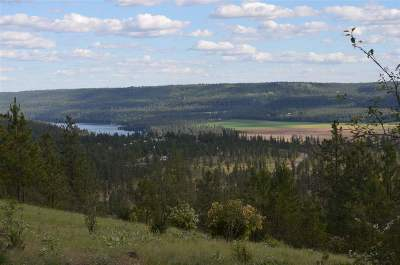 Nine Mile Falls Residential Lots & Land For Sale: Pine Ridge Way #LOT 12