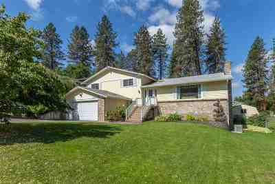 Spokane Single Family Home New: 11407 N Astor Rd