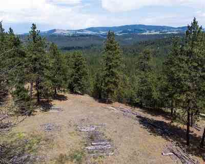 Spokane Residential Lots & Land For Sale: 9501 S Cedar Rim Ln