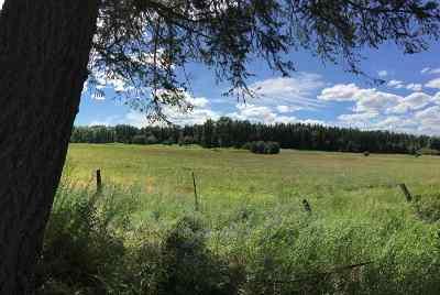 Deer Park Residential Lots & Land For Sale: 1211 E Eloika Lake Rd