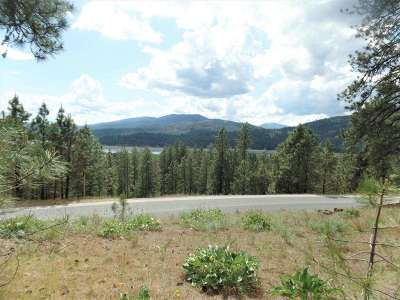 Kettle Falls Residential Lots & Land For Sale: Lot 101 Old Kettle Rd