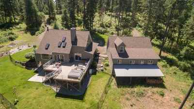 Mead Single Family Home For Sale: 19321 N Day Mt Spokane Rd
