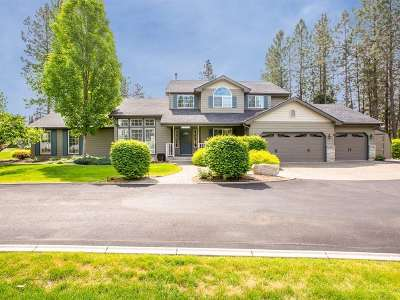 Nine Mile Falls WA Single Family Home For Sale: $439,900